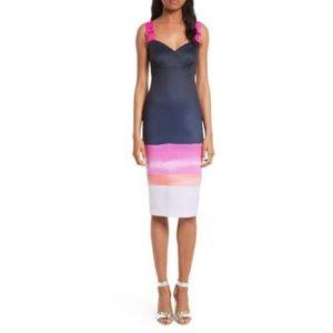 Ted Baker Jahner Marina Bodycon Dress